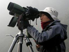 鳥類(猛禽類)調査状況(定点観察)
