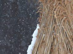 丸立に降る雪 3月(非掲載写真)